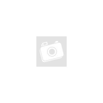 AL-KO Snowline 760 TE motoros hómaró